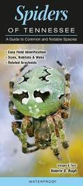 Spiders of Tennessee by Valerie M Bugh