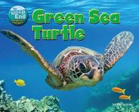The Deep End: Green Sea Turtle by Tom Jackson