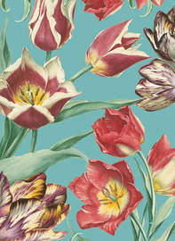RHS Tulips Cards (16 Cards/Envelopes) by Royal Horticultural Society