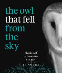 The Owl That Fell from the Sky by Brian Gill