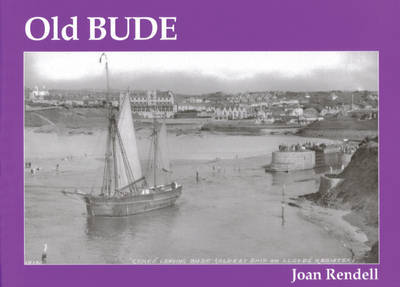 Old Bude by Joan Rendell image