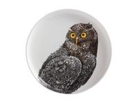Maxwell & Williams: Marini Ferlazzo Birds Plate - Owl