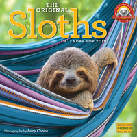 Sloths 2019 Square Wall Calendar by Lucy Cooke