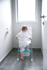 Moose Step on up Toilet Trainer-Grey/Aqua image