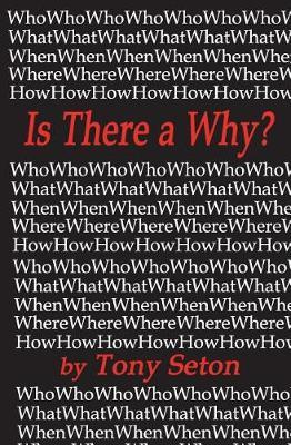 Is There a Why? by Tony Seton image