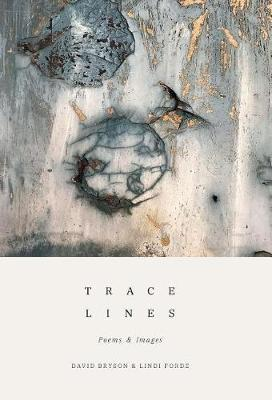 Trace Lines by David Bryson image