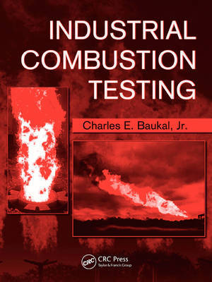 Industrial Combustion Testing image