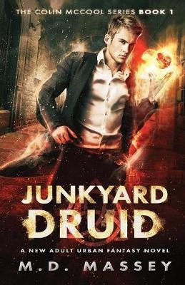 Junkyard Druid by M D Massey image