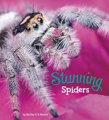 Stunning Spiders by Martha E.H. Rustad image