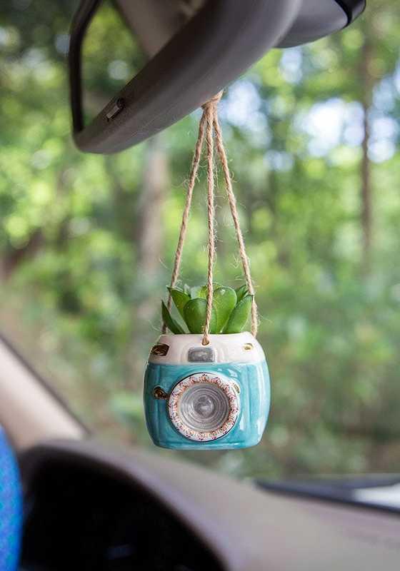 Natural Life: Hanging Succulent Critter - Aqua Camera