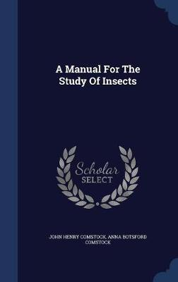 A Manual for the Study of Insects by John Henry Comstock image
