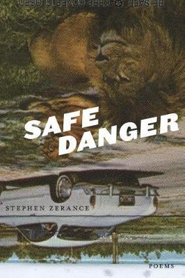 Safe Danger by Stephen Zerance image