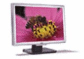 "ACER ACER AL2416W 24"" WIDESCREEN LCD MONITOR SLVR & BLK 6ms Response Rate Maximum Resolution: 1920 x 1200"