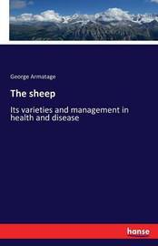 The Sheep by George Armatage