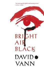 Bright Air Black by David Vann image