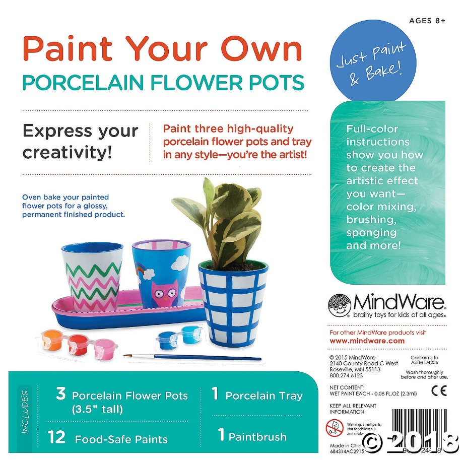 Mindware Create: Paint Your Own - Porcelain Flower Pots image