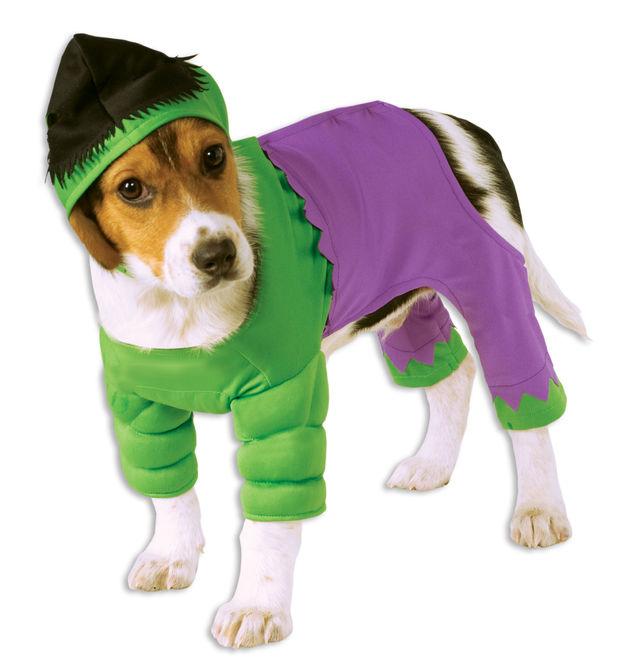 Marvel: The Hulk - Pet Costume (Large)