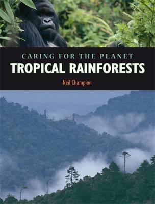 Rainforest by Nigel Champion