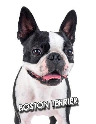 Boston Terrier by Notebooks Journals Xlpress