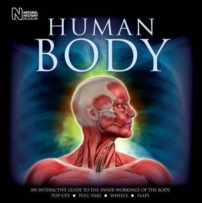 Human Body by Steve Parker image