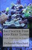 Saltwater Fish and Reef Tanks: From Beginner to Expert by Zechariah James Blanchard
