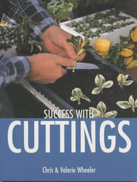 Success with Cuttings by Valerie Wheeler image