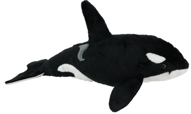 Orca with sound