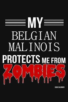 My Belgian Malinois Protects Me From Zombies 2020 Calender by Harriets Dogs