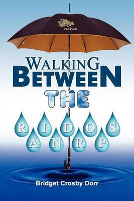 Walking Between the Raindrops by Bridget Crosby Dorr