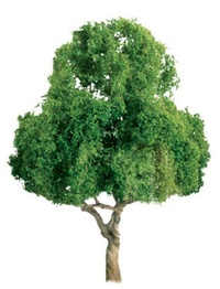 JTT: N Scale Deciduous Trees - 2 Pack