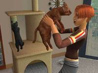 The Sims 2: Pets Expansion Pack DVD for PC Games