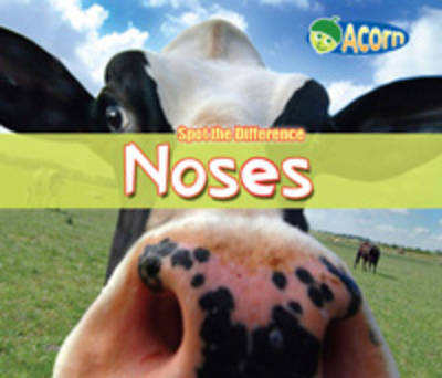 Noses by Daniel Nunn