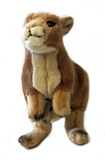 Kangaroo and Baby Joey Plush 22cm