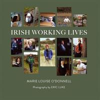 Irish Working Lives by Mary Louise O'Donnell