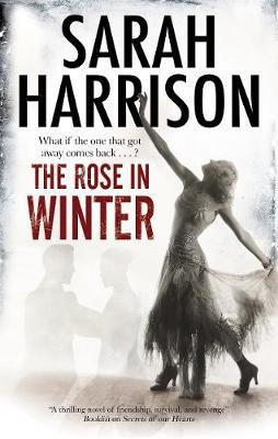 The Rose in Winter by Sarah Harrison image