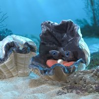 Folkmanis Hand Puppet - Giant Clam image