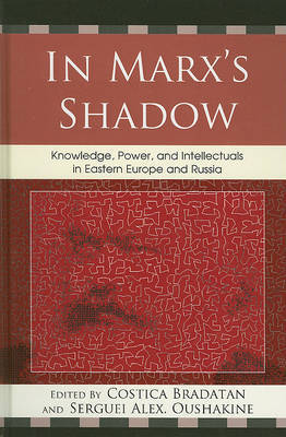 In Marx's Shadow image