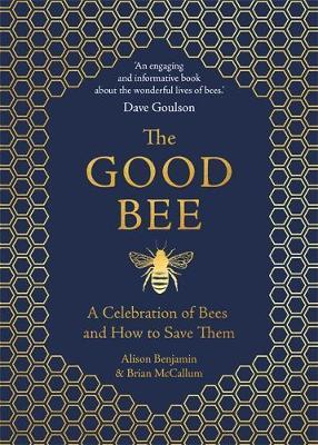 The Good Bee by Alison Benjamin