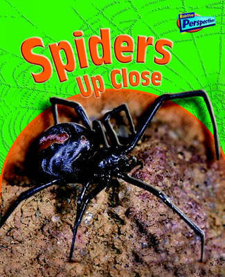 Spiders Up Close by Greg Pyers