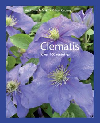 Clematis by Andromeda Matz