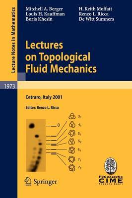 Lectures on Topological Fluid Mechanics by Mitchell A. Berger image