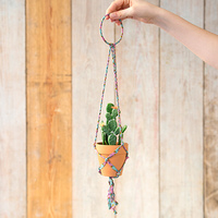 Natural Life: Hanging Succulent - Turquoise/Pink Hanger