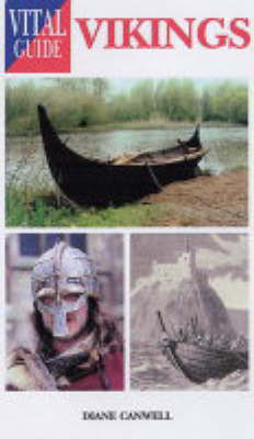 Vikings by Diane Canwell image