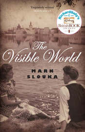 The Visible World by Mark Slouka image