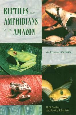 Reptiles and Amphibians of the Amazon image