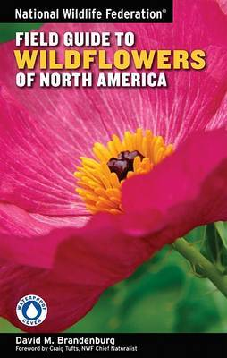 National Wildlife Federation Field Guide to Wildflowers of North America by David M Brandenburg image