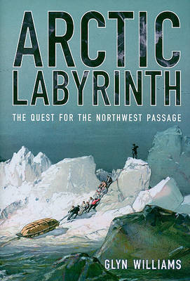 Arctic Labyrinth by Glyn Williams image