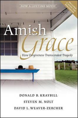 Amish Grace by Donald B Kraybill image