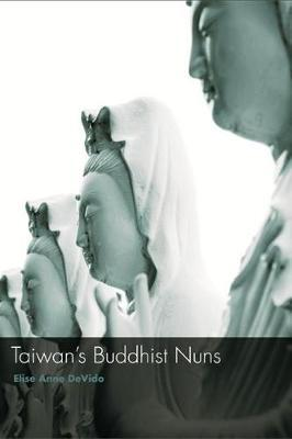 Taiwan's Buddhist Nuns by Elise Anne DeVido image