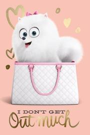 The Secret Life of Pets Wall Poster - I Don't Get Out Much (444)